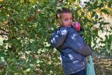4948_Kids_picking_apples.jpg