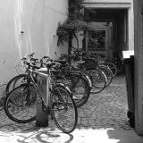 Cycles in the city