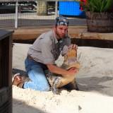 Alligator Wrestling at Gatorland, Orlando, FL