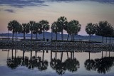 Sunrises, Sunsets, & Landscapes
