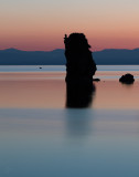 Mono Lake Tufa Osprey in Morning Twilight