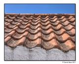 Pantile Roof