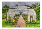 The Edible Garden Polytunnel