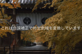 _DSC2027_pb_color edit.jpg