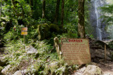 c4784 Begin of Aihualama Trail