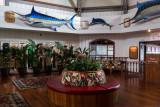 P0416 Kona Inn Fishing Trophies