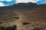 24-Sliding Sands Trail