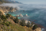 Big Sur View