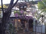 Chisholm Residence