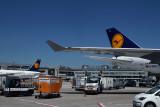 LUFTHANSA AIRCRAFT FRA RF IMG_3010.jpg