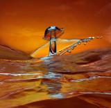 Orange Tide