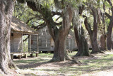 Slave Cabins at Evergreen Plantation - Ghosts of the Past