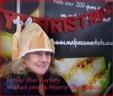 Turkey card-small.jpg