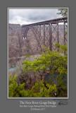 New River Gorge Bridge Overlook.jpg