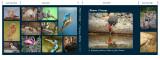 Nature Closeup, 140-page photo book