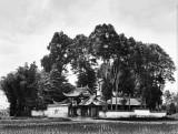 1908 - Kuan Hsien Temple