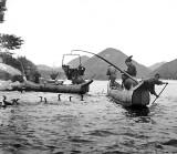 c. 1897 - Cormorant fishermen