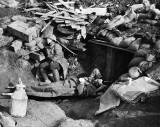 3 July 1916 - Casualties