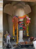 elephants quarters.jpg