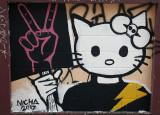 kitty demo.jpg