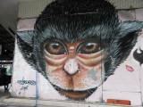monkey corner.jpg