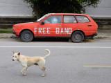 free band.jpg