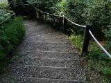 trail_entrance.jpg