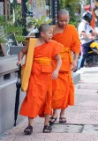 young_monks_in_the_world.jpg