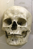 Visite du musée archéologique de Guiry en Vexin