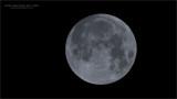 Super Moon Jan 31st, 2018 - Swarovski Scope