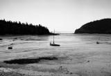 Sandy Cove, Low Tide, Digby Neck, Nova Scotia