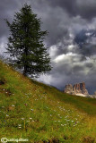 Dolomiti - Averau