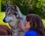 014_sedona-wolf-week-plan-b.jpg