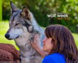 033_sedona-wolf-week-plan-b.jpg