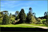 Our Park.jpg