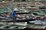 Boats - Tam Coc - Ninh Binh