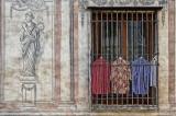 Shirts - Granada