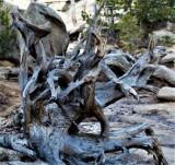 Sculpture at Gem Lake