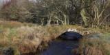 Old bridge on Low Mains, Loch Lomond NNR