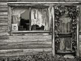 Decorative Decay,  Mildred, Kansas