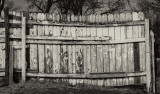 Patched Fence