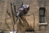 Spider by Local Artist  Mike Miller