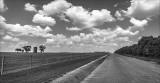Rural Road in mono