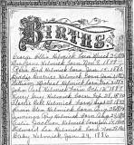 Helmick Births 1876-1902
