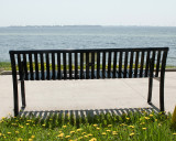 Serenity Benches