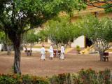 Monks on the Grounds of Vipassana Dhura Monastery