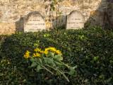 Van Gogh's Final Resting Place