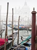 Venice + Topaz