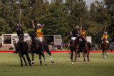 Ladies International Polo Cup - Australia Vs New Zealand