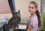Laurianne et Grand-duc d'Amérique - Laurie and Great horned owl